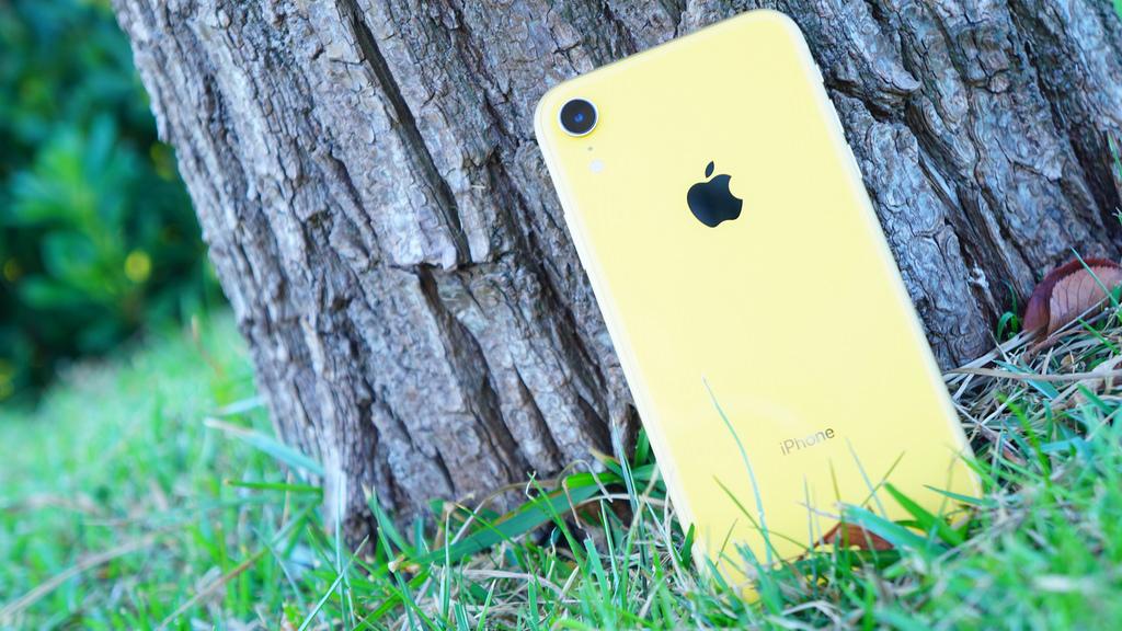 Apple、iPhone XRの増産中止?旧機種のiPhone 8を増産か
