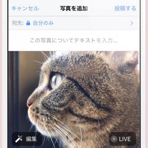Facebook、iPhoneの新機能「LivePhotos」に対応。投稿できない時の対処方法
