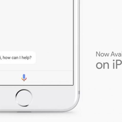 「Google Assistant」がiPhoneにやってくる。今年の夏には日本でも