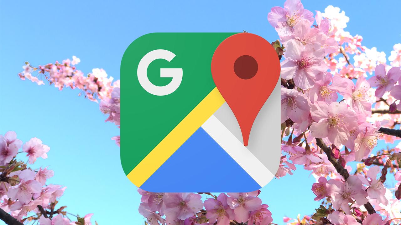 Googleマップ、花見に役立つ桜の開花情報やおすすめスポットをアプリで提供