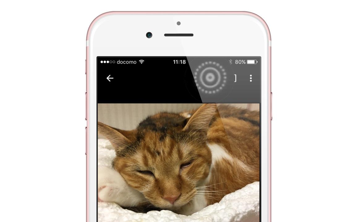 Googleフォト、iPhoneの動く写真「Live Photos」に対応