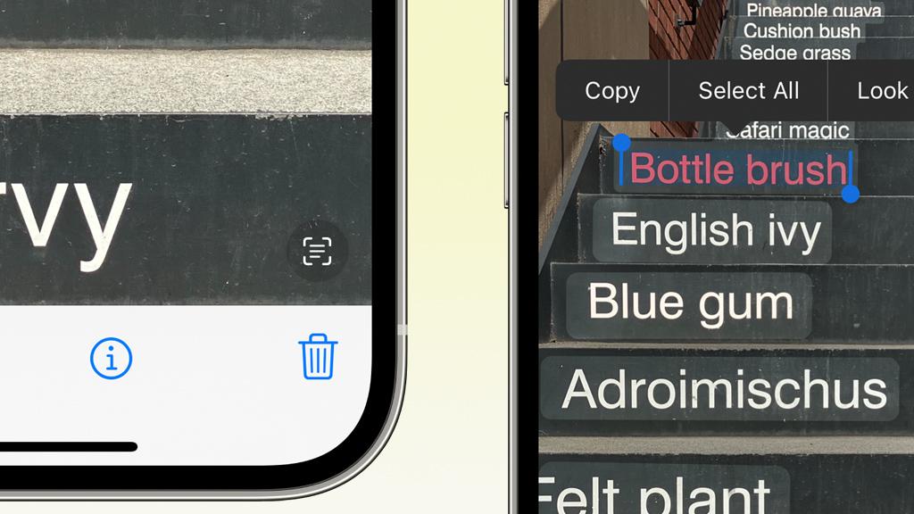 iOS 15の新機能:写真内の文字をコピー・検索・翻訳できるライブテキストの使い方
