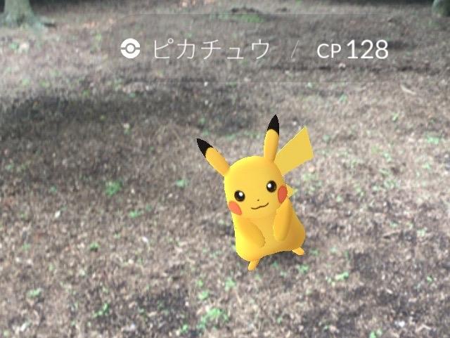 ポケモンGO、東京都内でピカチュウをゲットするなら新宿御苑
