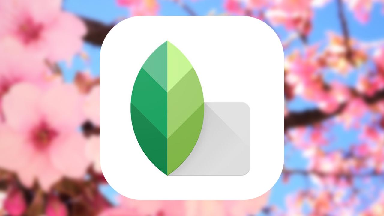写真加工アプリ「Snapseed」がアップデート。効果を保存して再利用が可能に
